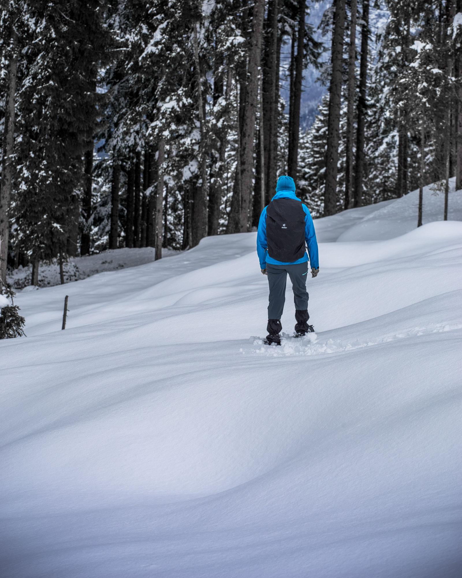 Schneeschuhe, Wandern