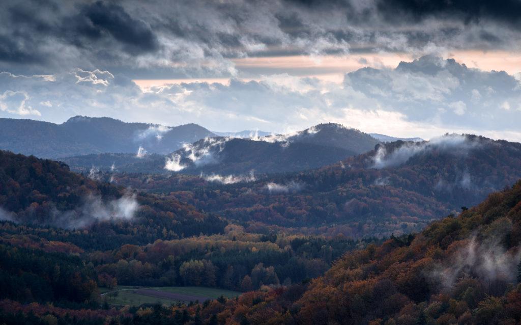 Pfälzer Wald Nebel Fotospot Pfalz