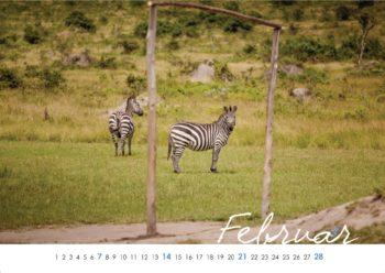 Wild Uganda Kalenderblatt Feburar